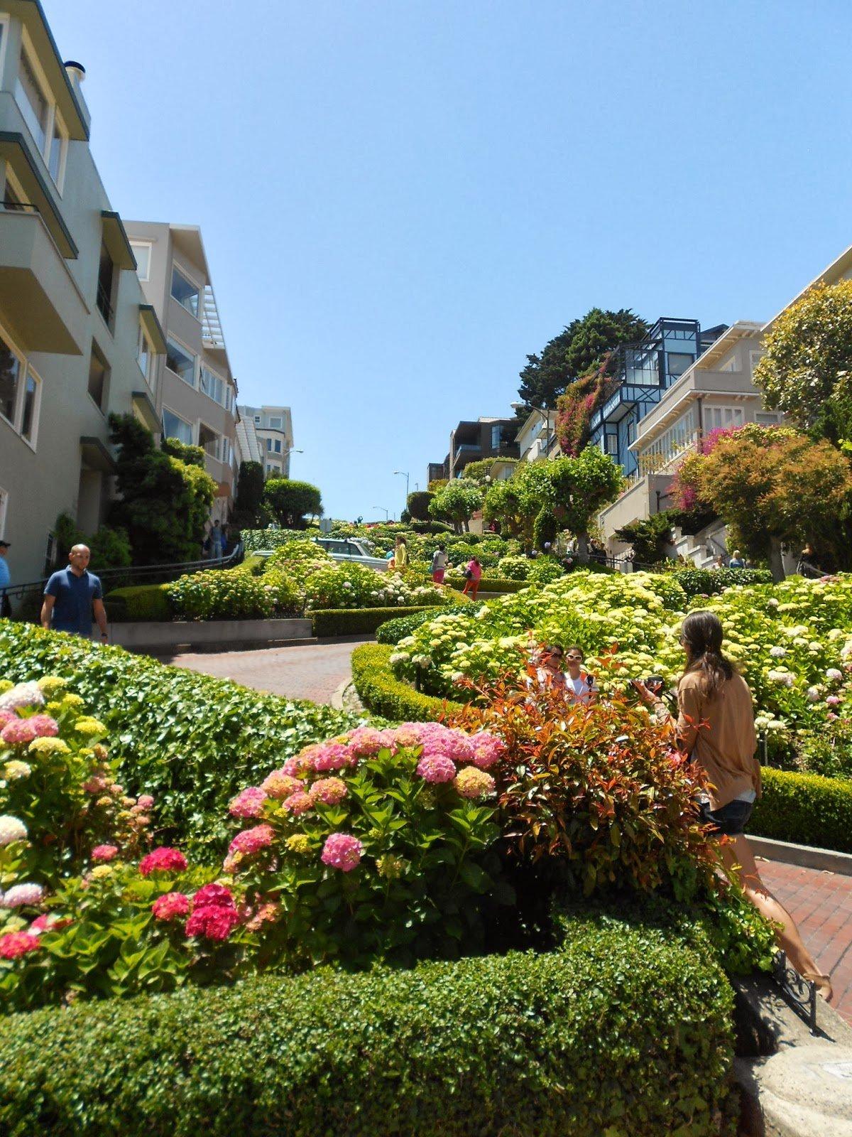 São Francisco: um passeio colorido pela Lombard Street