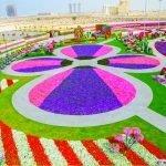 Os mais incríveis jardins por aí