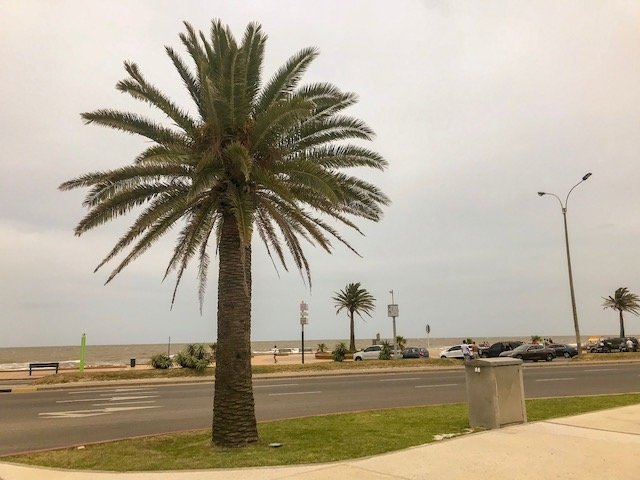 Praia Carrasco em Montevideo