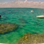 Mergulho nos Parrachos de Maracajaú: passeio imperdível para quem visita Natal/RN