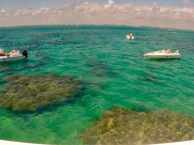 mergulho nos Parrachos de Maracajaú - RN