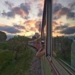 Passeio de Trem de Morretes a Curitiba, será que vale a pena?