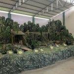 A história do Paraná contada num parque, que tal? Hisgeopar