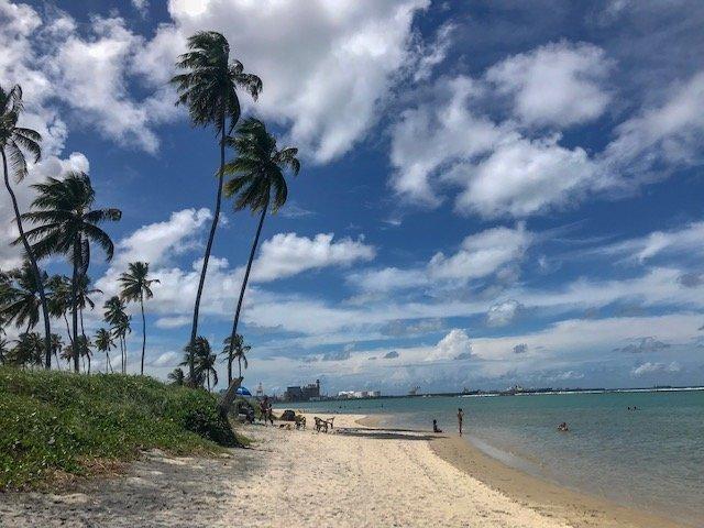 Praia Da Gamboa - buggy em porto de galinhas