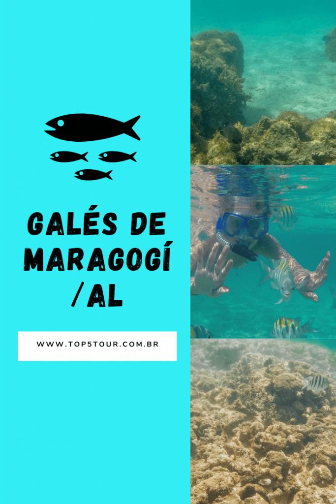 Mergulho nas Galés de Maragogi