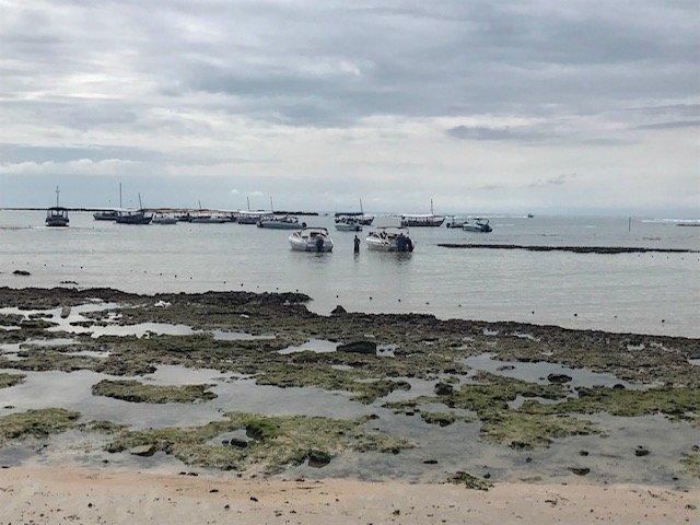 Barcos Saindo Para Passeio Na Terceira Praia