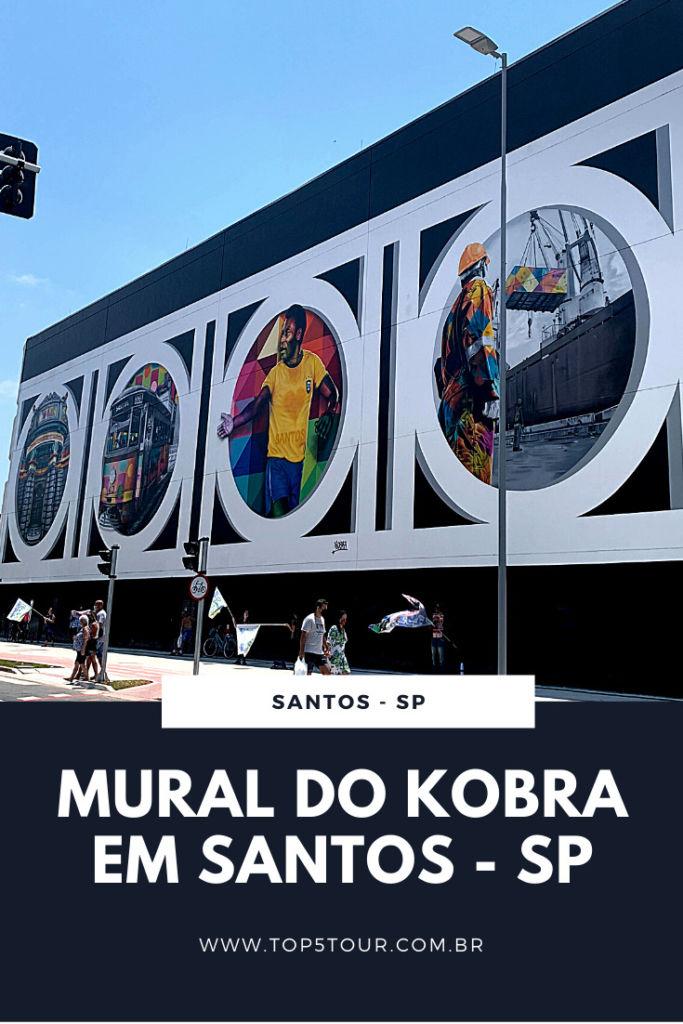conheça o mural do kobra em santos