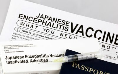 Vacina para viajar: qual a melhor?